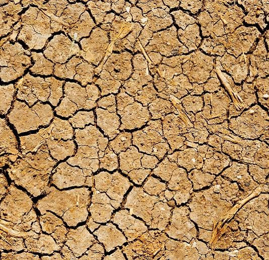 Drought: A crisis in more ways than one