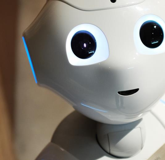 My experience with a robot counsellor