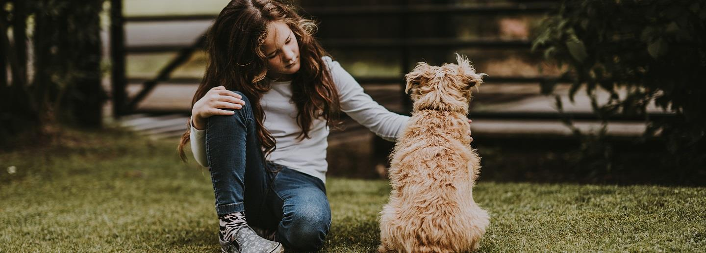 Pets And Their Impact On Mental Health