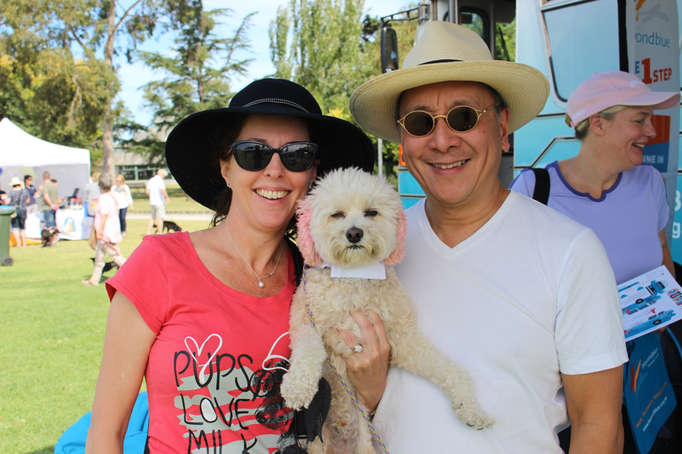 One of the many photogenic pooches at Stonnington Pets in the Park!