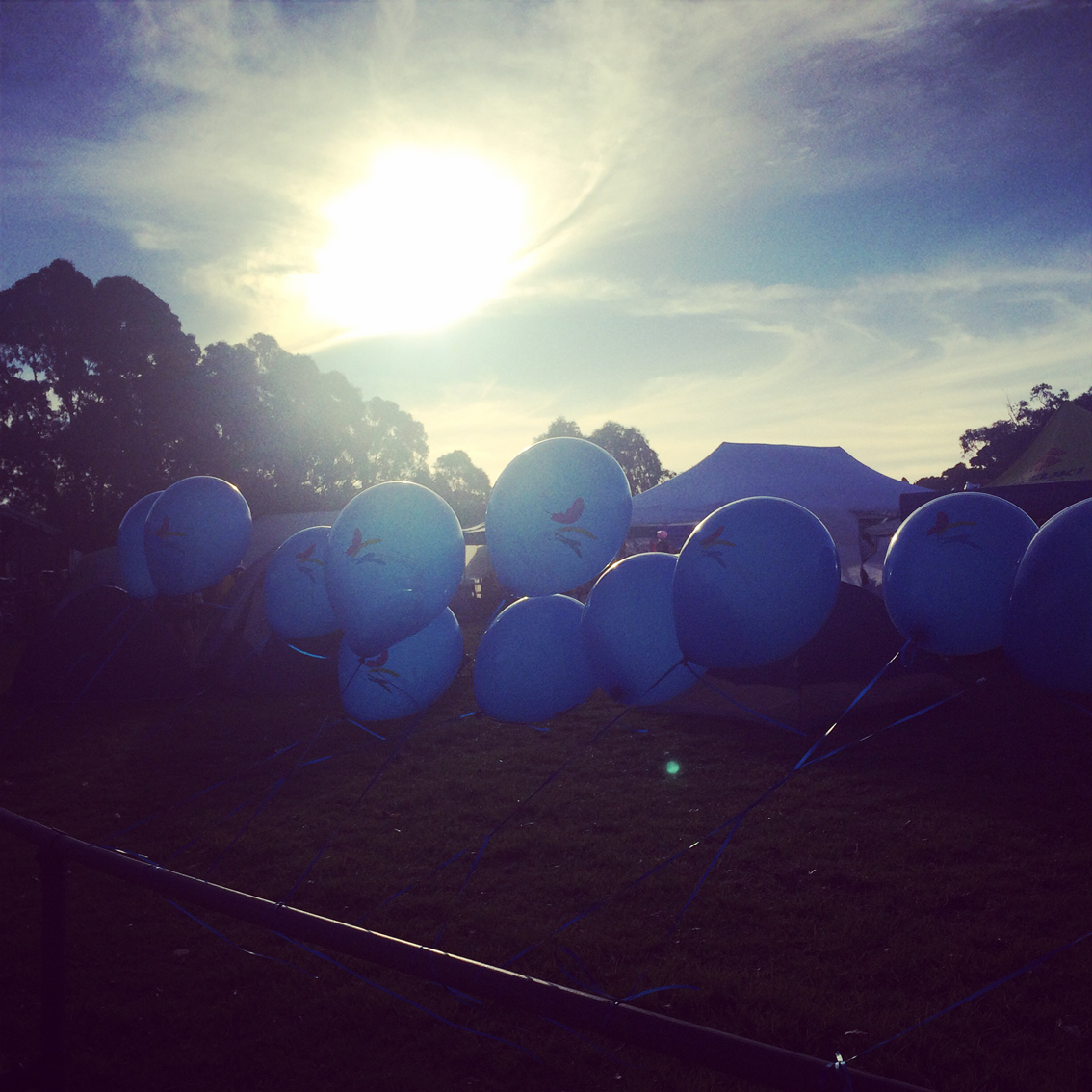 Blue balloons line the course in Berwick.