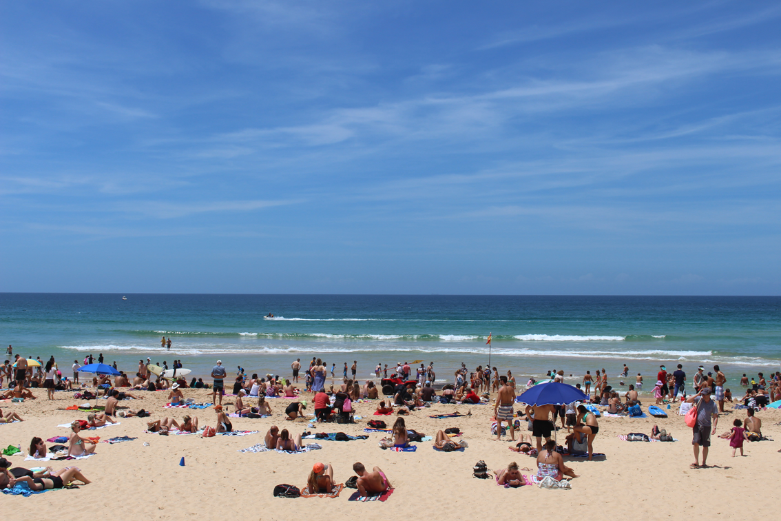 Our view of Manly Beach.