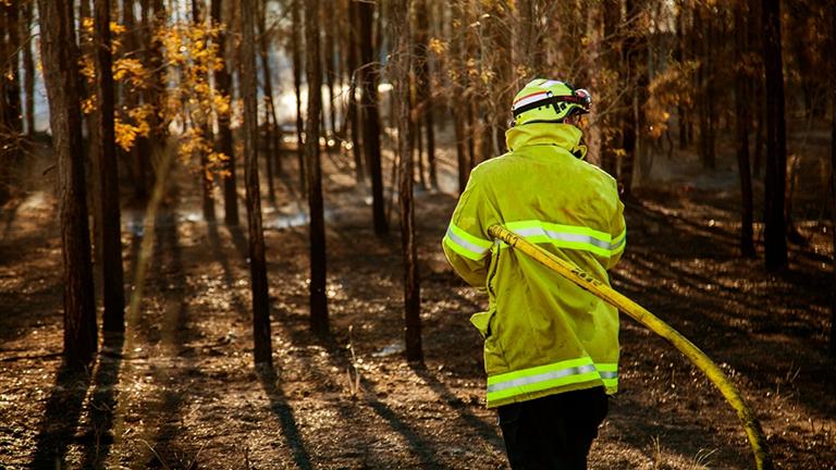 Bushfires and mental health mobile