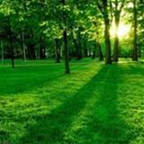 littleone13 avatar