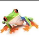 Wednesday avatar