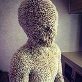 TheSanctum avatar