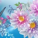 Anne74 avatar