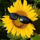 Carer07 avatar