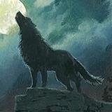 smallwolf avatar
