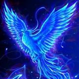 bluehorseshoes avatar