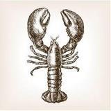 LittleMissAlice avatar