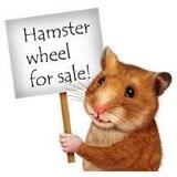 Katyonthehamsterwheel avatar