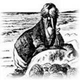 Croix avatar